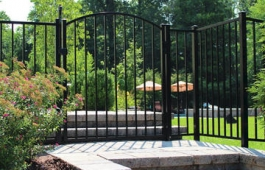 "48"" Texas Arched Gate"