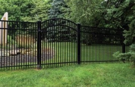 """48"""" Wyoming with Arched Gate"""