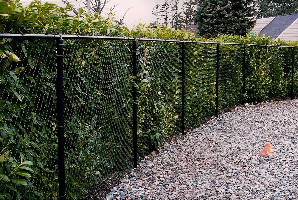 Wayside Fence Company Bay Shore Ny Chain Link